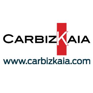 Ofertas Carbizkaia coches segunda mano ocasión kilometro 0 cero